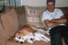 nick-dog-and-pup-relax-on-sofa
