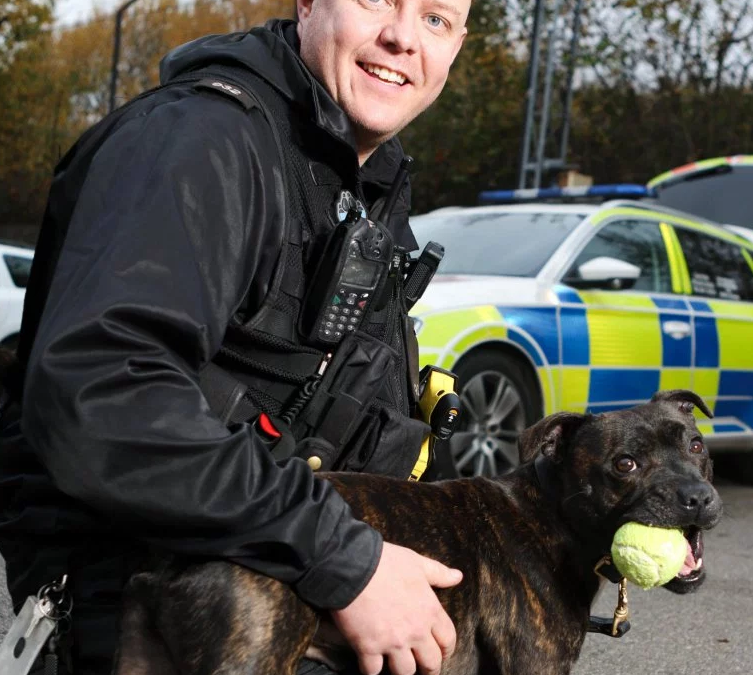 First Staffie Police Dog Is Breaking Down Negative Stereotypes